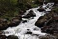Ruisseau des Cougnets (Ariège).jpg