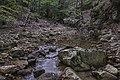 Ruisseau du Vialais, Haut-Languedoc, Rosis cf07.jpg