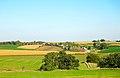 Rural Grant County - panoramio (1).jpg