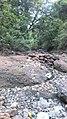 Rural erosion control (32418093430).jpg