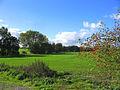 Rural scene - Brentwood - geograph.org.uk - 68266.jpg
