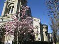 Saint-Pierre de Neuilly Mars 2017.jpg