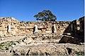 Salamis 403DSC 0590.jpg