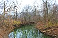 Saline River from Bridge on Sherman Road, London Township, Michigan - panoramio (1).jpg