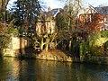 Salisbury -Tree House - geograph.org.uk - 1717594.jpg