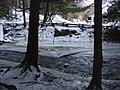 Salt Springs State Park (3283870363).jpg