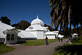 San Francisco Conservatory of Flowers-17.jpg