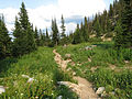 Sawtooth Lake Trail (15184878122).jpg