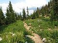 Sawtooth Lake Trail (15184878122).jpg