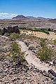 Scenery at Bluffs Trail - Las Vegas Bay Campground (1ef811dd-e7b9-432c-a6d8-7b30d33e359d).jpg