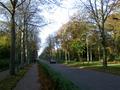 Scheveningseweg, gezien richting Scheveningen, 2015.png