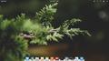 Scrivania di elementary OS 0.4 Loki.png