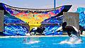 SeaWorld San Diego6.jpg