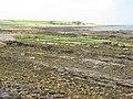 Seashore near Kilrenny Mill - geograph.org.uk - 1367297.jpg
