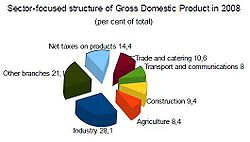 Sector-focused structure of Gross Domestic Product in 2008