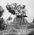 Serie Landmijnen ruimen bij Hoek van Holland, Bestanddeelnr 900-6483.jpg