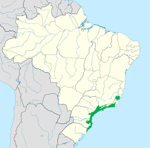 Serra do Mar coastal forests - Image: Serra do Mar coastal forests WWF
