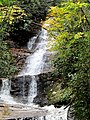 Setrock Creek Falls Black Mountain Campground Pisgah Nat Forest NC 4389 (37917063582).jpg