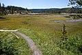 Shoshone Geyser Basin (3944659658).jpg