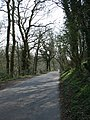 Shut Mill Lane - geograph.org.uk - 385806.jpg