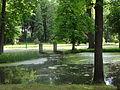Siary zespół pałacowo-parkowy park nr A-201 (36).JPG