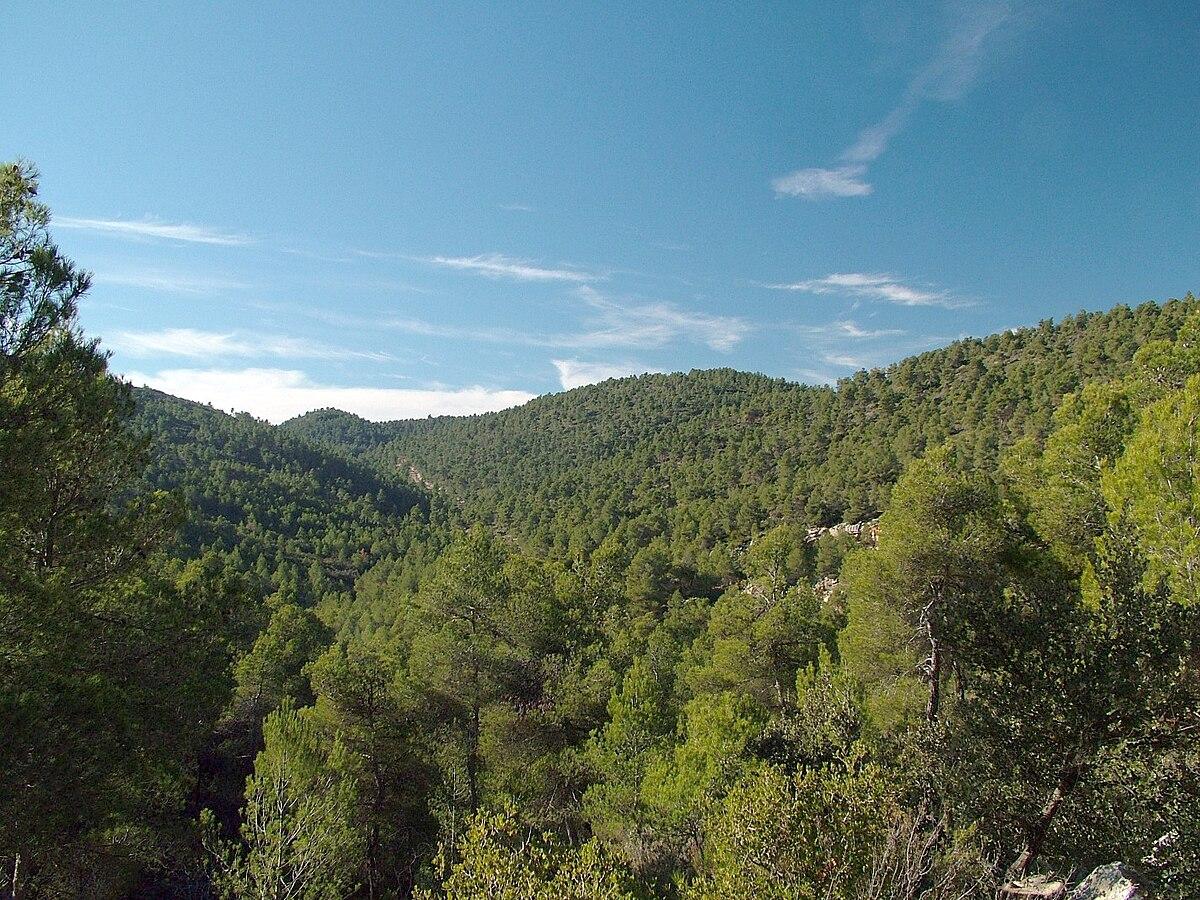 Fotos de la sierra de tepehuanes durango 97