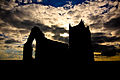 Silhouette, St. Michaels Church, Burrow Mump, Burrowbridge, Somerset (5087490122).jpg