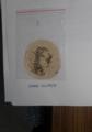 Silk moth.png