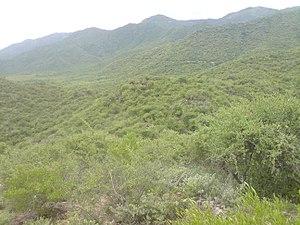Sirumalai - Image: Sirumalai Hills,viewed from Mathamalai Annai Veilankanni Church,Dindigul,TN,I ndia