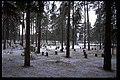 Skogskyrkogården - KMB - 16000300018326.jpg