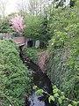 Smestow Brook at Newbridge - geograph.org.uk - 408735.jpg