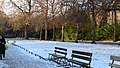 Snow at St. Stephen's Green, Dublin (5212009563).jpg