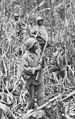 """Soldiers of the 93rd Infantry Division (United States) """"Cautiously advancing through the jungle, while on patrol in Japanese territory off the Numa-Numa Trail - NARA - 531184 (cropped).jpg"""