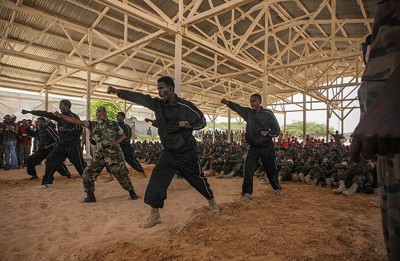 File:Somali National Army Passout Parade 12 (7786580696).jpg