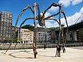 Spiderettes - panoramio.jpg