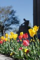 Spring at Archives 1 (26637717733).jpg