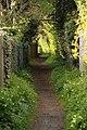Spring in Epsom (7197772288).jpg