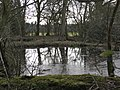 Square pond northeast of Brownley Green - geograph.org.uk - 1767934.jpg