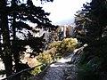 St Hilarion Castle 20180402 img 10.jpg