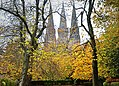 St Mary's Episcopal Cathedral in Autumn.jpg