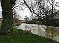 Stamford brimming Welland (geograph 3336365).jpg