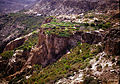 Step Gardens of Jebel Akhdar - Oman.jpg