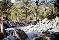 Stone Lions (Yapashi Pueblo)(Clight).jpg
