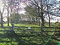 Storeton, Wirral - DSC04109.JPG