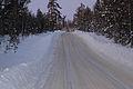 Street in Lofsdalen.jpg