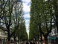 Street of St. Michael the Archangel's Church in Vilnius.jpg