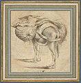 Study of a Donkey MET DP835419.jpg
