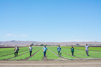 Sweetgreen - Sweetgreen's Food and Beverage Team work with hundreds of suppliers from around the country. The team visits all of these farmers, big and small, to ensure the product's quality and sourcing meets the companies standards.