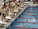 Swimming relay exchange.jpg