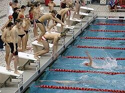 Swimming relay exchange.jpg
